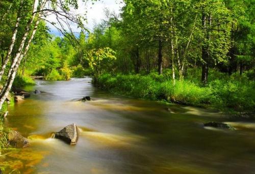 【菁菁校園】一條河的隱秘