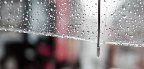 【隨類賦彩】梅雨的情話
