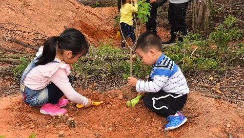 傳承愛綠齊參與 第四十屆澳門綠化週